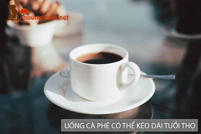 Uống cà phê có thể kéo dài tuổi thọ