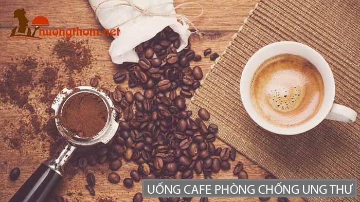 Uống cafe có thể giúp phòng chống ung thư