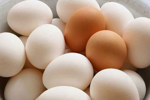 Làm thế nào để bảo quản trứng và phân biệt trứng gà ta bị tẩy trắng?
