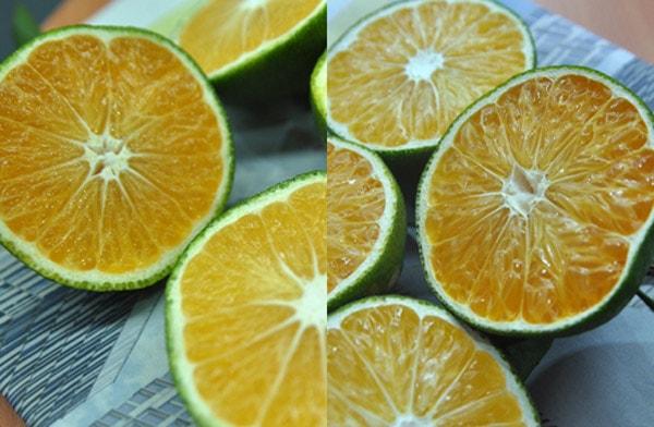 Mách bạn cách nhận biết cam Việt Nam và cam Trung Quốc chuẩn xác