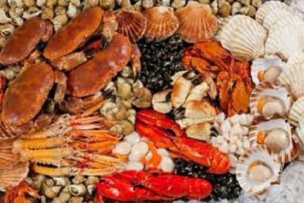 Các món hải sản nướng vô cùng thơm ngon hấp dẫn