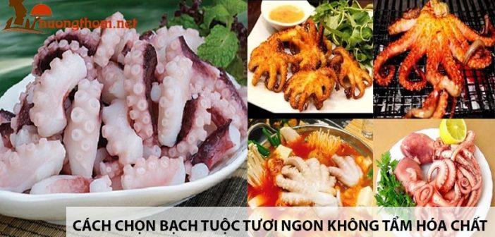 Cach-chon-bach-tuoc-tuoi-ngon-khong-tam-hoa-chat-min