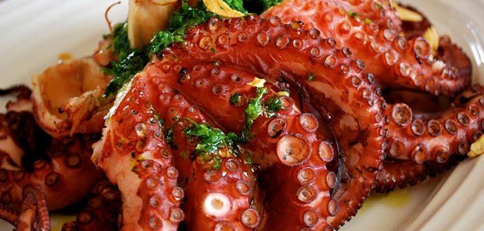 Ăn bạch tuộc có độc không? Làm gì khi bị ngộ độc bạch tuộc?
