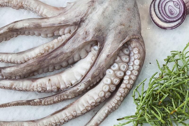 Mẹo sơ chế bạch tuộc nhanh nhất