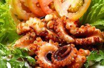 các món ăn ngon từ bạch tuộc