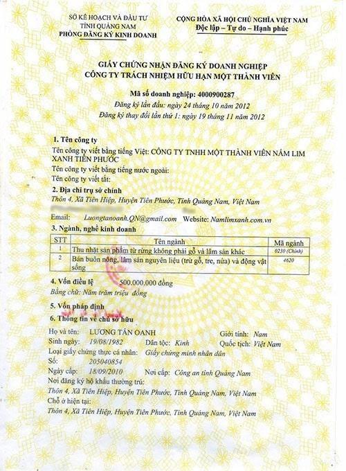 Địa chỉ bán nấm lim xanh rừng tự nhiên tỉnh Điện Biên2